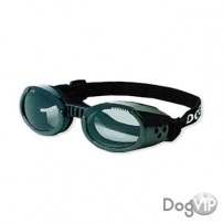 LUNETTES DOGGLES